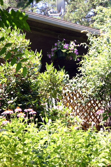 garden94